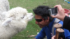 Alpaca & our guide