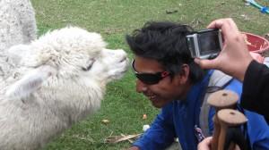 Alpaca & our guide