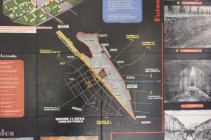 puma-shaped city